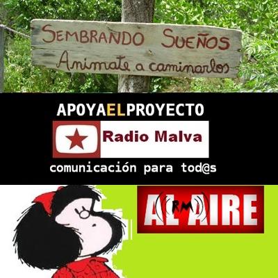 radio malva  (77)