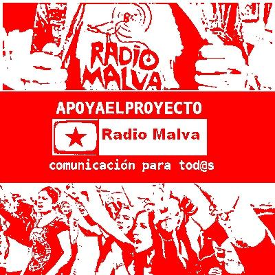 radio malva  (103)