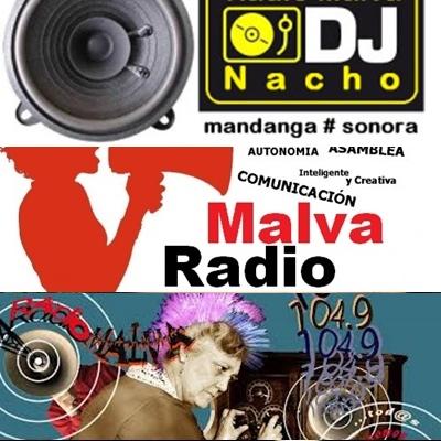 radio malva  (40)