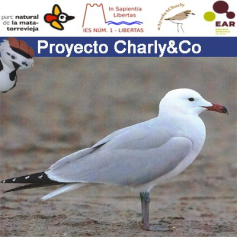 Yeray López i Projecte Charly&Co
